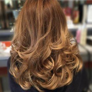 Blow Dry Julie Hair Styler In Irvine